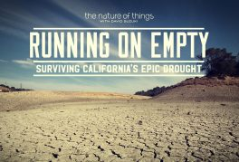 Running-on-Empty-19244-264x179.jpg