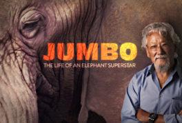 Jumbo: The Life of an Elephant Superstar